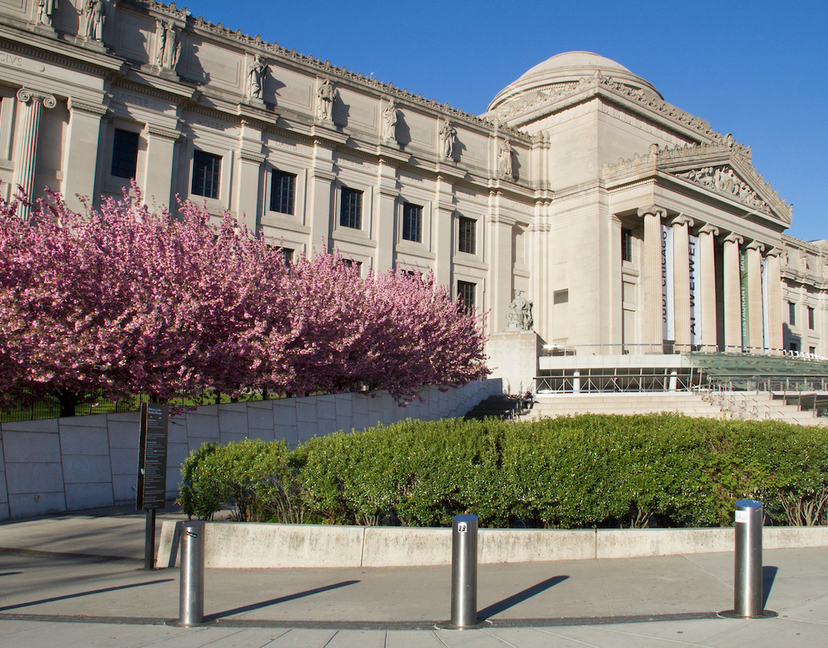 Brooklyn museum exterior cherry blossoms